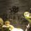 【池袋】高級スパ施設「タイムズスパレスタ」で過ごす休日が最高!サウナ好きカップルにも!